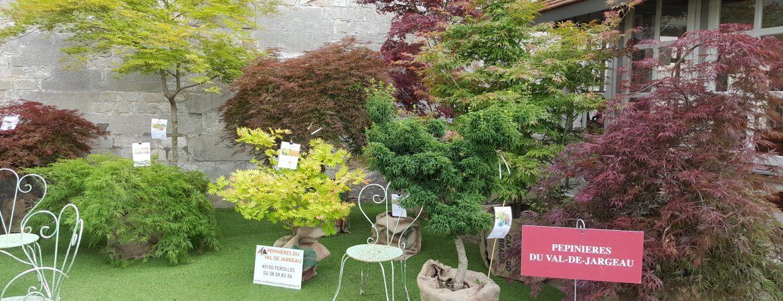 Exposition Jardins, Jardin aux Tuileries à Paris